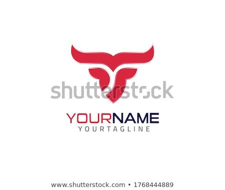 Финансы forex Этикетки логотип бык несут Сток-фото © netkov1