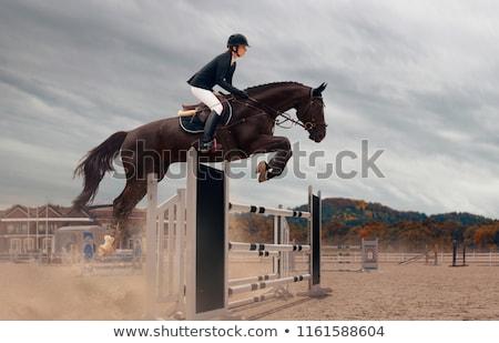 Lány lóháton zsoké lovaglás ló sport Stock fotó © fanfo