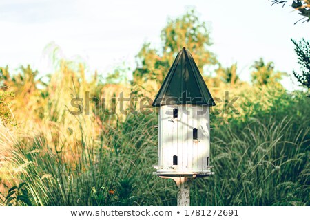 the birdhouse in spring Stock photo © adrenalina
