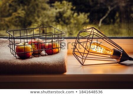 Metal orange edison lamp Stock photo © bezikus
