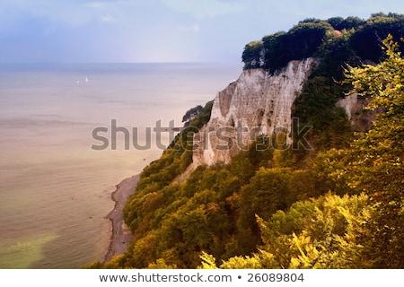 Kredy jesienią wyspa lasu charakter Zdjęcia stock © LianeM