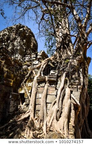 kule · tapınak · angkor · görmek · dört · yüzler - stok fotoğraf © bbbar