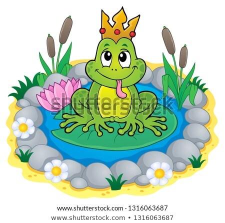 herceg · béka · rajz · illusztráció · vicces · terv - stock fotó © clairev