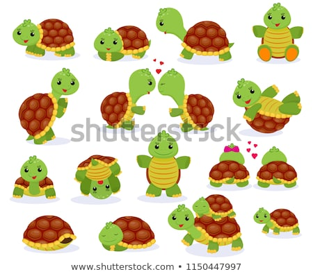 Ingesteld schildpad karakter illustratie gelukkig achtergrond Stockfoto © bluering