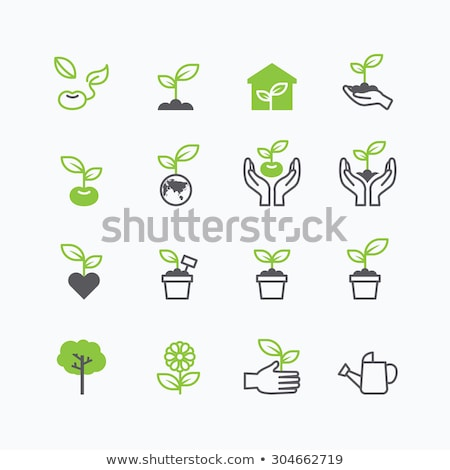 Greenhouse Plants Growing in Pots, Flowers Set Stock photo © robuart