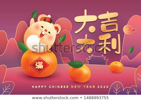 Capodanno cinese cute ratto costume carta biglietto d'auguri Foto d'archivio © cienpies
