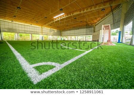 спортивная команда подготовки области Футбол зима Сток-фото © matimix