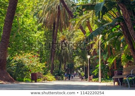 Casona del Parque in Malaga stock photo © duoduo