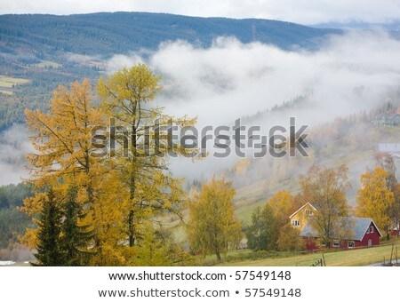 landscape near Hegge, Norway Stock photo © phbcz