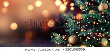 kerstboom · buiten · ingericht · lichten · gedekt · sneeuw - stockfoto © phbcz