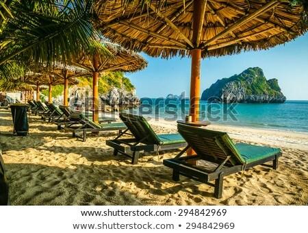 тропический · пляж · пород · пальмами · синий · морем - Сток-фото © photography33