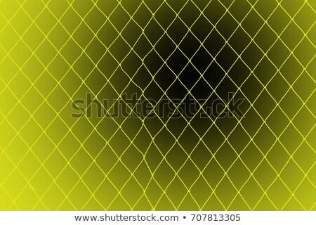 Kadın tuzak siyah fishnet yüz Stok fotoğraf © adamr