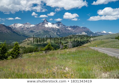 Beartooth Highway: Pilot and Index Peaks Overlook Stock photo © fisfra
