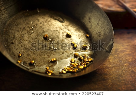 gold pan Stock photo © clearviewstock
