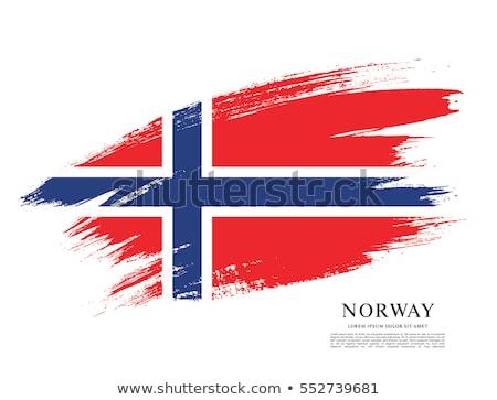 Noors grunge vlag reizen wind Europa Stockfoto © tintin75