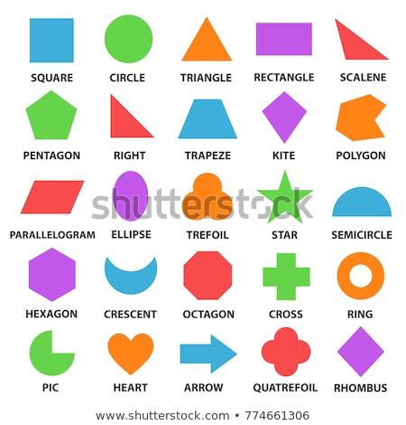 geométrico · diferente · formas · cores · branco · flor - foto stock © mayboro1964