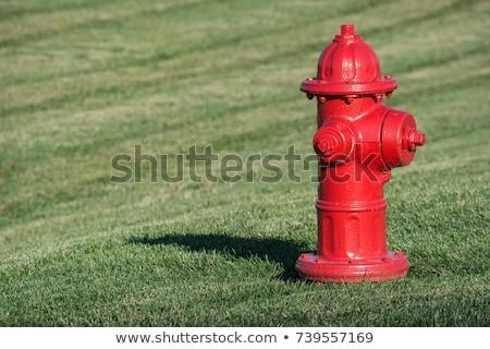 velho · água · vermelho · fogo · cidade · Lisboa - foto stock © compuinfoto