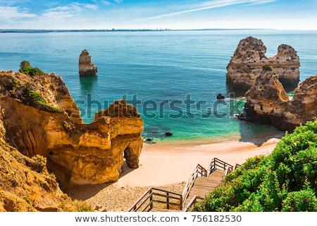 海 ビーチ ポルトガル ブラウン 岩 ストックフォト © compuinfoto
