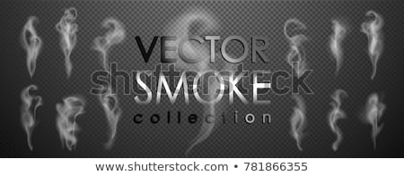 set of vector realistic smoke on black background stock photo © fresh_5265954