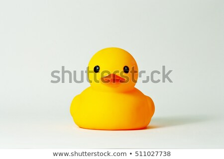 Rubber ducky floating in a swimming pool Stock photo © deandrobot