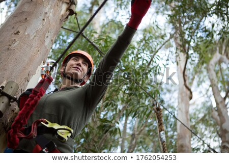 Escursionista donna line foresta albero Foto d'archivio © wavebreak_media