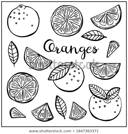 Pomarańczy sylwetka odizolowany czarny tle lata Zdjęcia stock © deandrobot