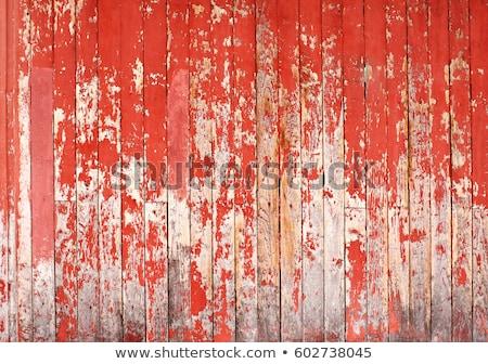 oude · grunge · hout · paneel · geschilderd · oranje - stockfoto © lunamarina