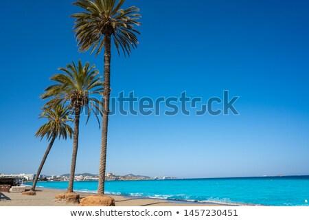 Ibiza Playa d En Bossa beach in Balearic Islands Stock photo © lunamarina
