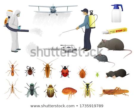 Exterminator Spraying Pesticide Insect Spray Stock photo © AndreyPopov
