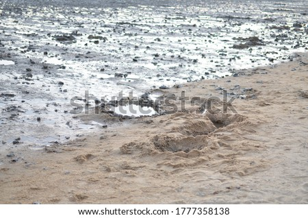 abstract ebb tide scenery Stock photo © prill