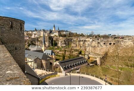 Oude Luxemburg bloemen wolken landschap Stockfoto © compuinfoto