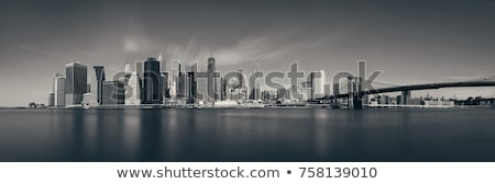 Manhattan New York skyline BW from East Stock photo © lunamarina