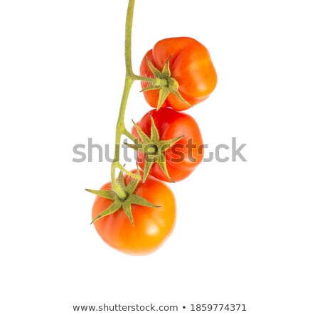 Three mellow red tomatoes Stock photo © Givaga