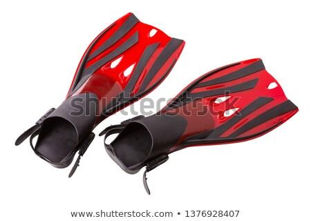 red Flippers Stock photo © shutswis