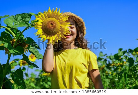 pretty little girl looks at sunflower in garden stock photo © paha_l