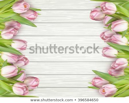 Beautiful bouquet of pink tulips. EPS 10 Stock photo © beholdereye