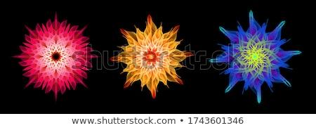 sacred geometric shapes Stock photo © SArts