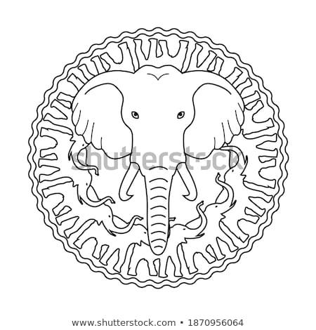 Elefantii in jurul grădină zoologică semna ilustrare natură Imagine de stoc © bluering