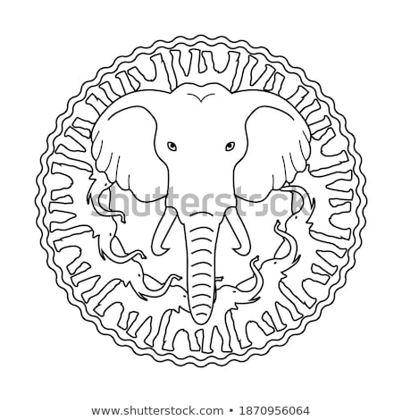 Autour zoo signe illustration nature Photo stock © bluering