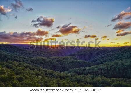ebor falls waterfall stock photo © clearviewstock