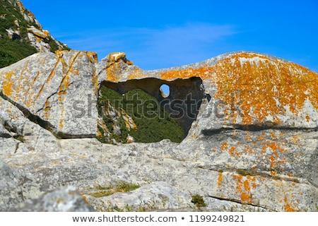 Pedra da Campa stone hole in Islas Cies islands Stock photo © lunamarina