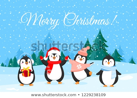 Merry Christmas Greeting, Penguin in Funny Hat Stock fotó © robuart