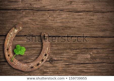 old horseshoe on wooden background Stock photo © dolgachov