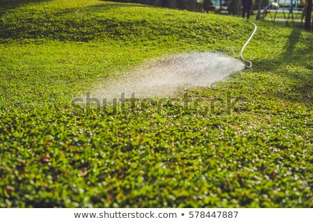 Asian woman watering a green and floral garden in the suburb of Nha Trang Stock photo © galitskaya