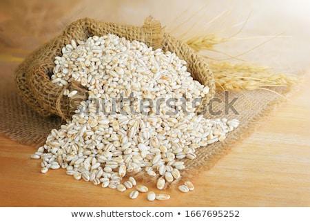 árpa étel nyár farm búza aratás Stock fotó © leeser