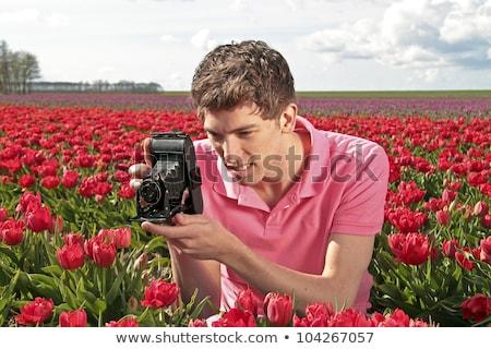 fiú · mező · tulipánok · virág · egészség · piros - stock fotó © ivonnewierink
