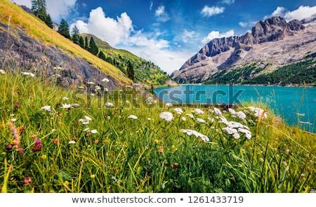 озеро лет мнение дороги горные Сток-фото © Antonio-S