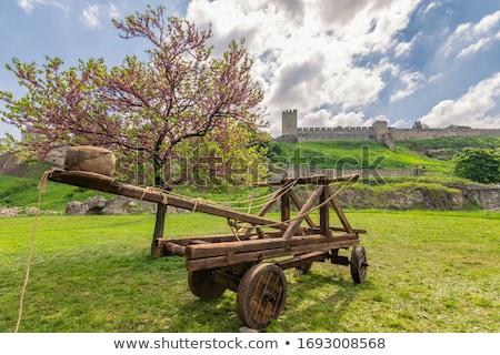 Fából készült használt középkor fal kastély klasszikus Stock fotó © smuki