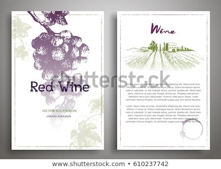 szőlőtőke · keret · szőlő · étel · természet · levél - stock fotó © carodi