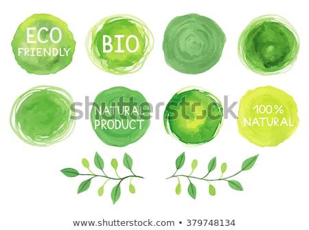ベクトル · 水彩画 · スポット · 緑の葉 · 抽象的な - ストックフォト © kostins